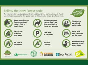 New Forest Code Rules for visitors to the New Forest