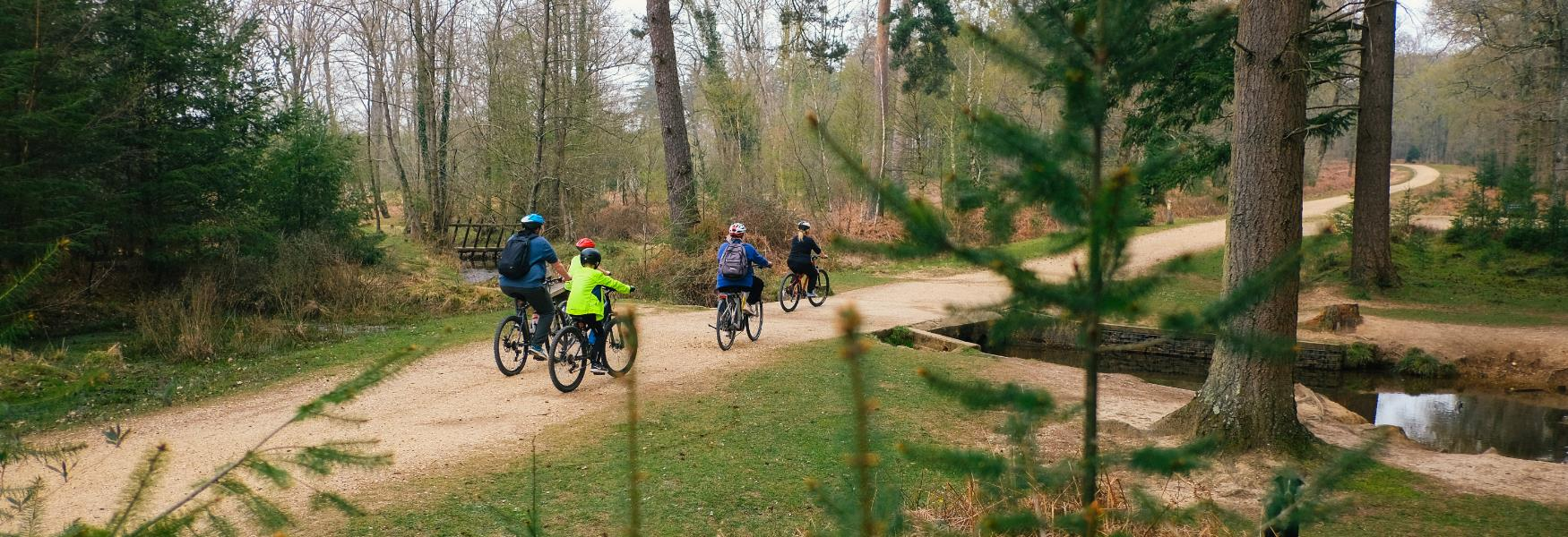 Family cycling down gravel track in the New Forest