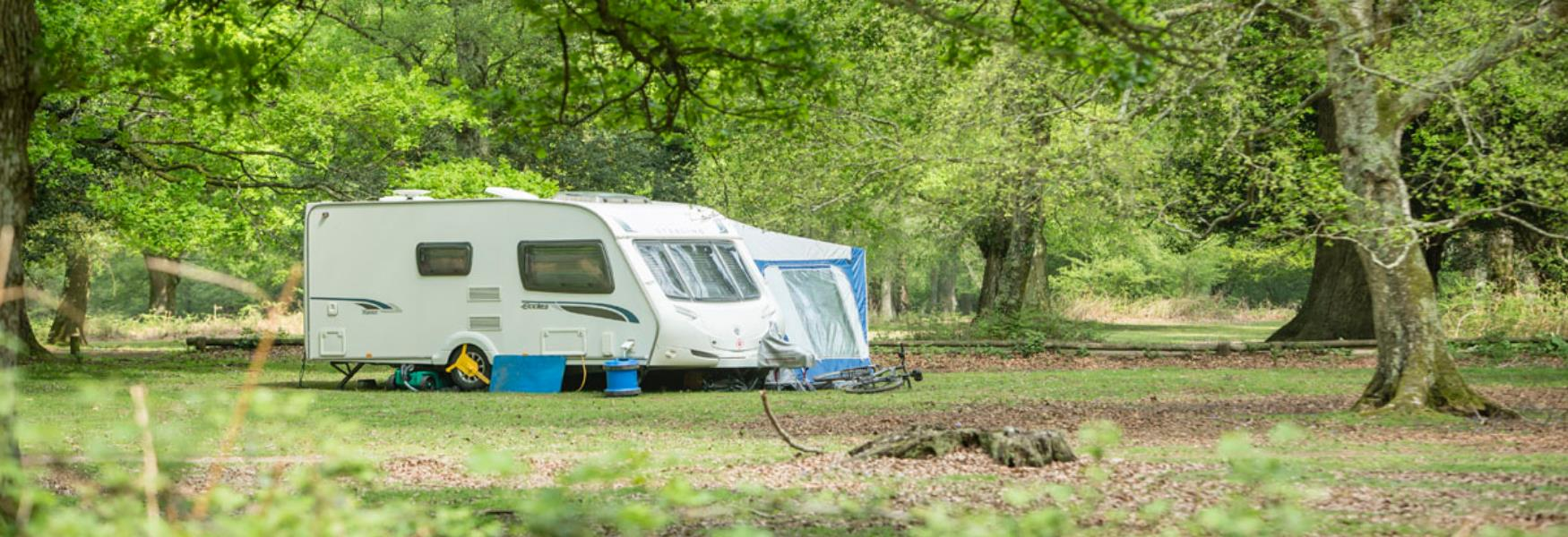 New Forest Camping Caravans And Holiday Parks