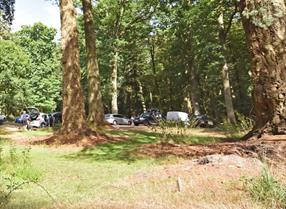 Forest Car Park in the New Forest