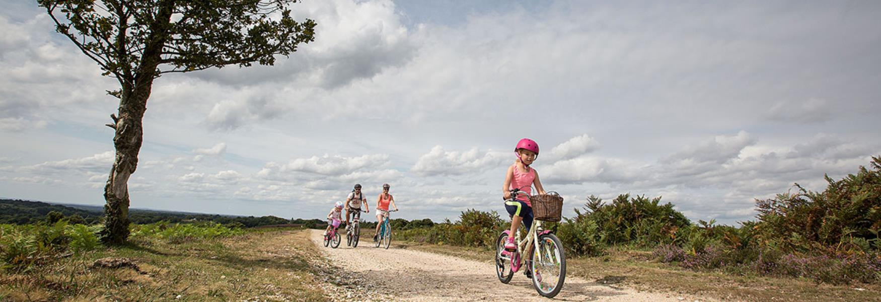Family cycling on gravel path in the New Forest
