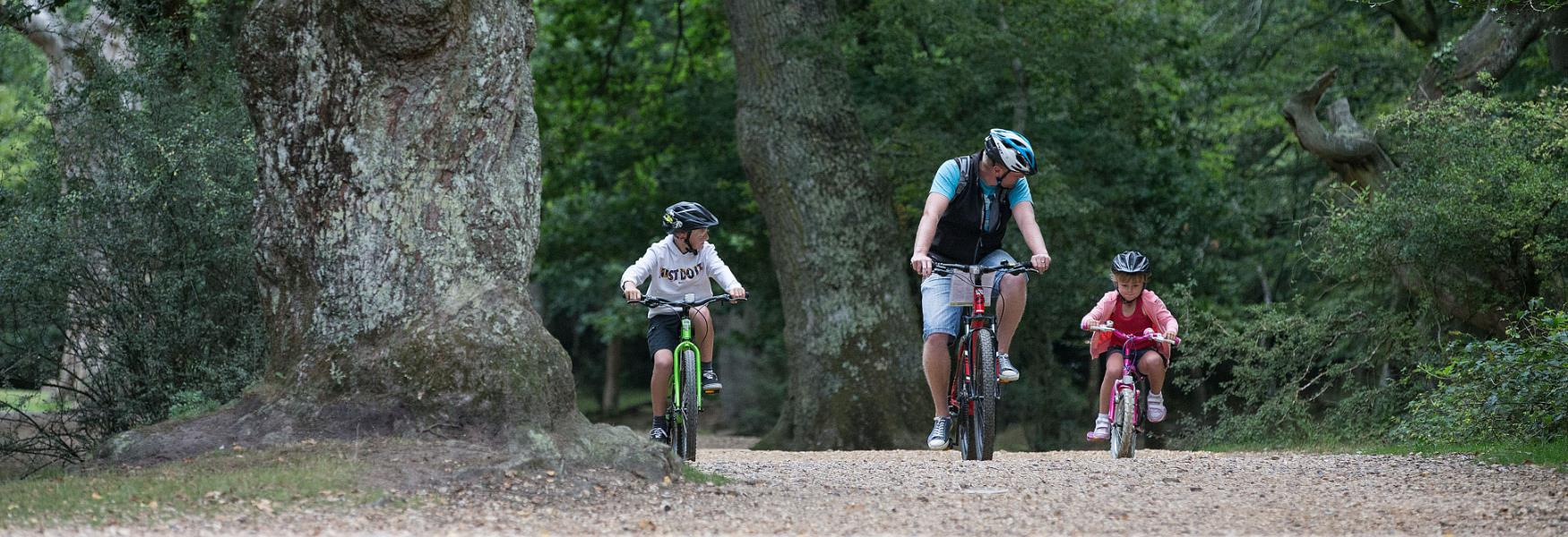 Family Routes - Visit The New Forest