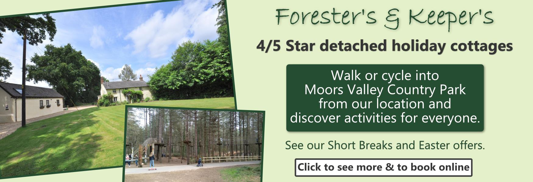 Best New Forest Cottages Lodges Self Catering Apartments