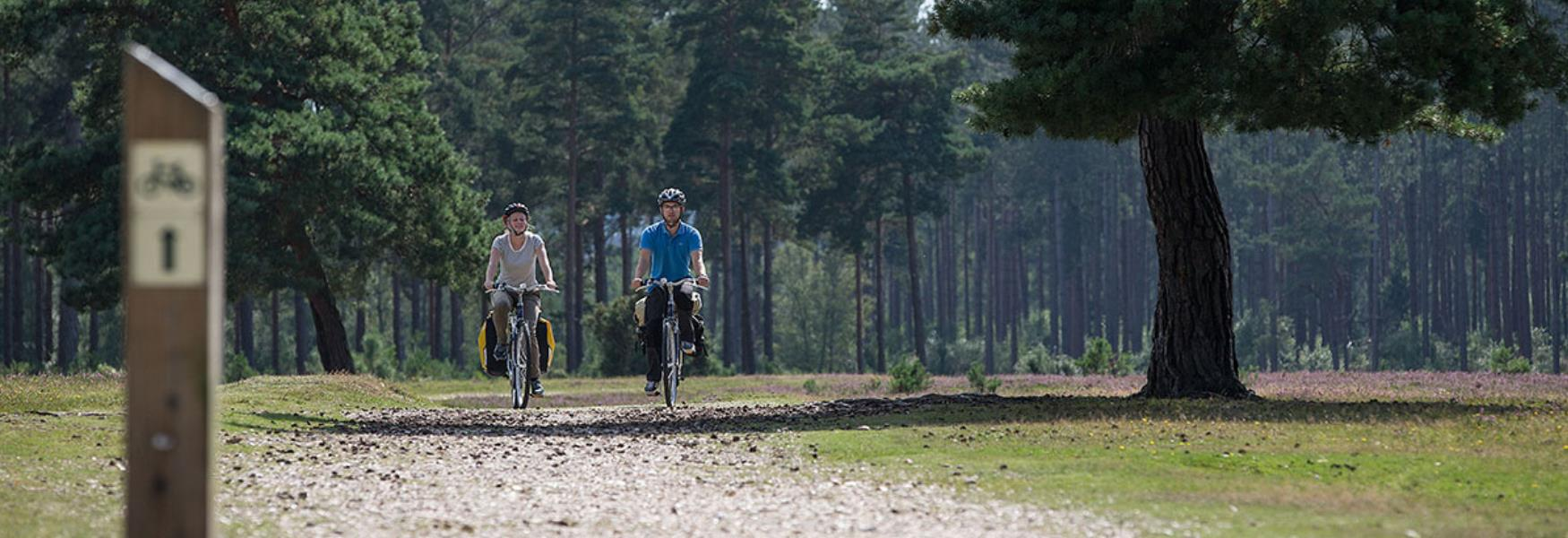 Couple cycling down cycling track in the New Forest