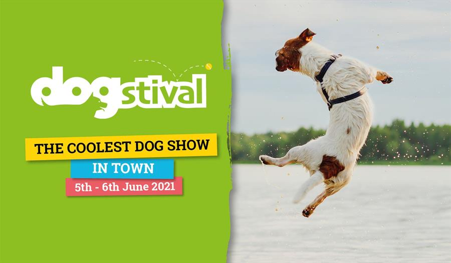 Dogstival 2021 E-Ticket - Day Tickets