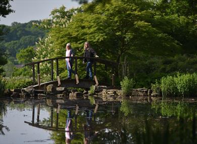 Couple enjoying the lake at Furzey Gardens