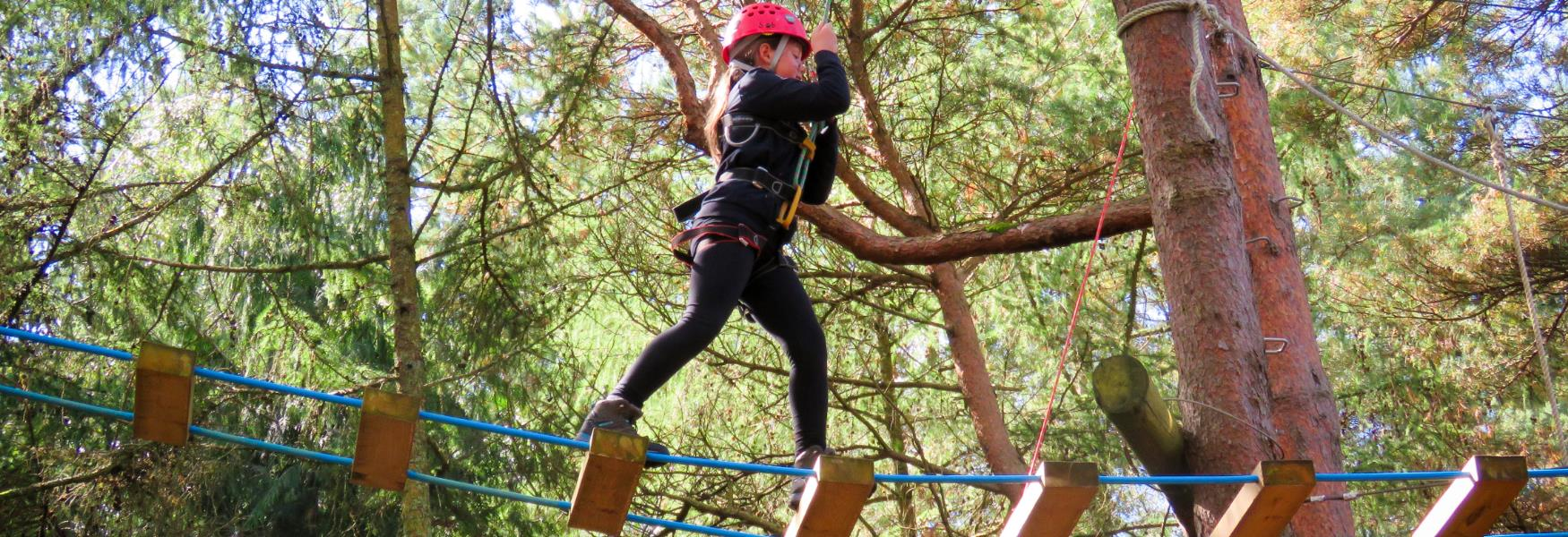tree top climbing activity at go ape in the new forest