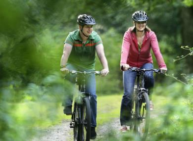 New Forest Cycling – Where two wheels are better than four