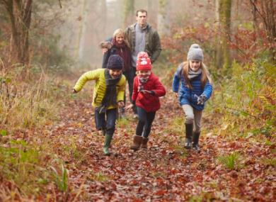 Visit the New Forest for a fabulous February half-term