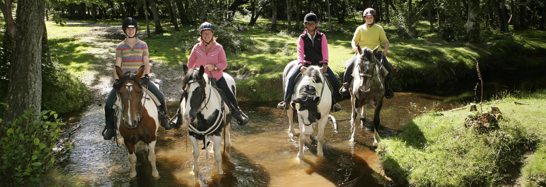 horse riding with burley villa in the new forest