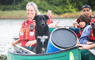 Doggy Paddles with New Forest Activities
