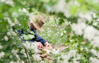 Slow Food - Spring Foraging with Claudio Bincoletto