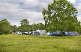 tents at campsite at holmsley caravan & camping site in the new forest