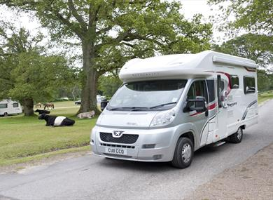 caravan at denny wood caravan & camping site in the new forest