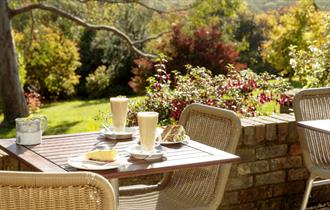 Coffee and cake on the terrace at Furzey Gardens Tea Rooms