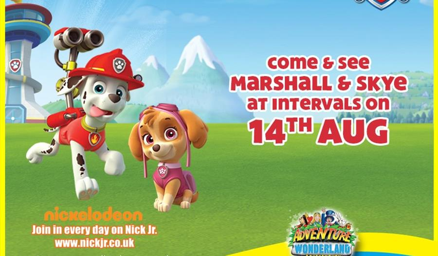 Come and meet Paw Patrol's Marshall and Skye