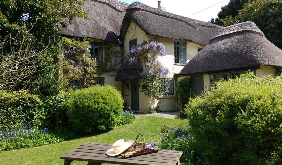 6 bedroom thatched holiday cottage in the New Forest