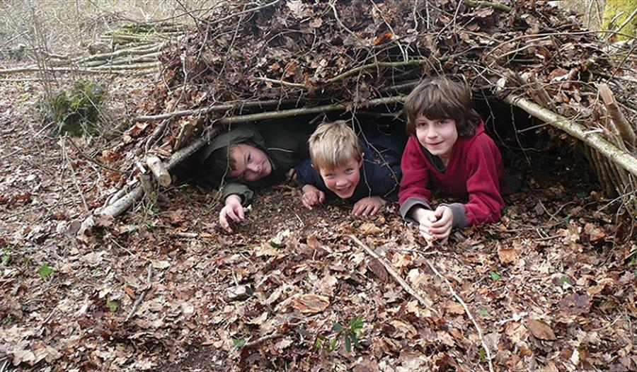 Eagle Owls Club: Bushcraft - Shelter Building Masters