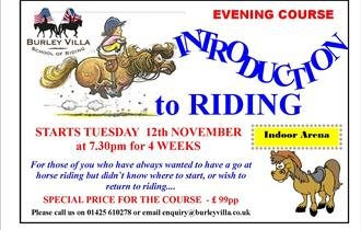 Introduction to Horse Riding Evening Course