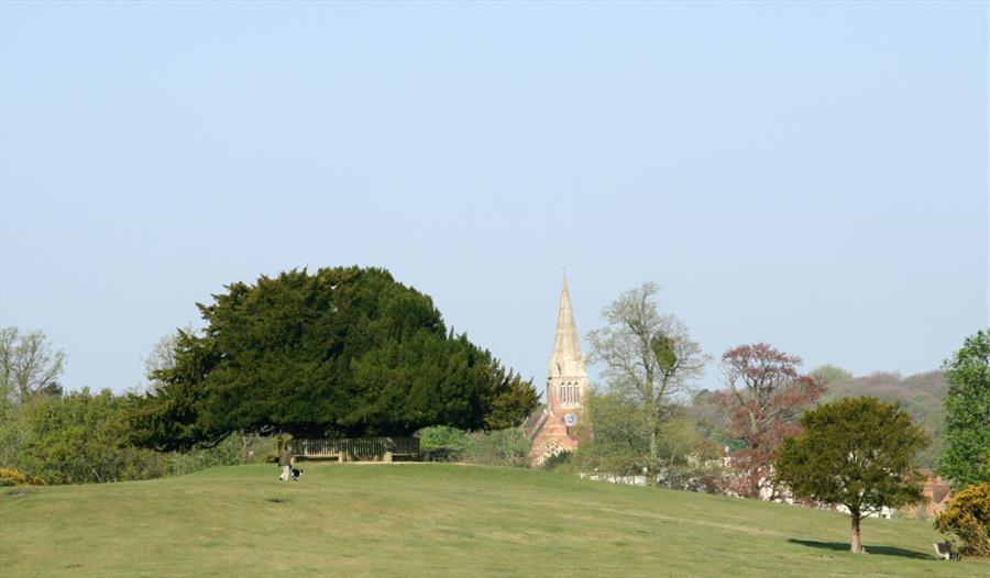 Lyndhurst Parish Walk