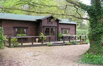 front of wilf's cabin holiday cottage and self catering in the new forest