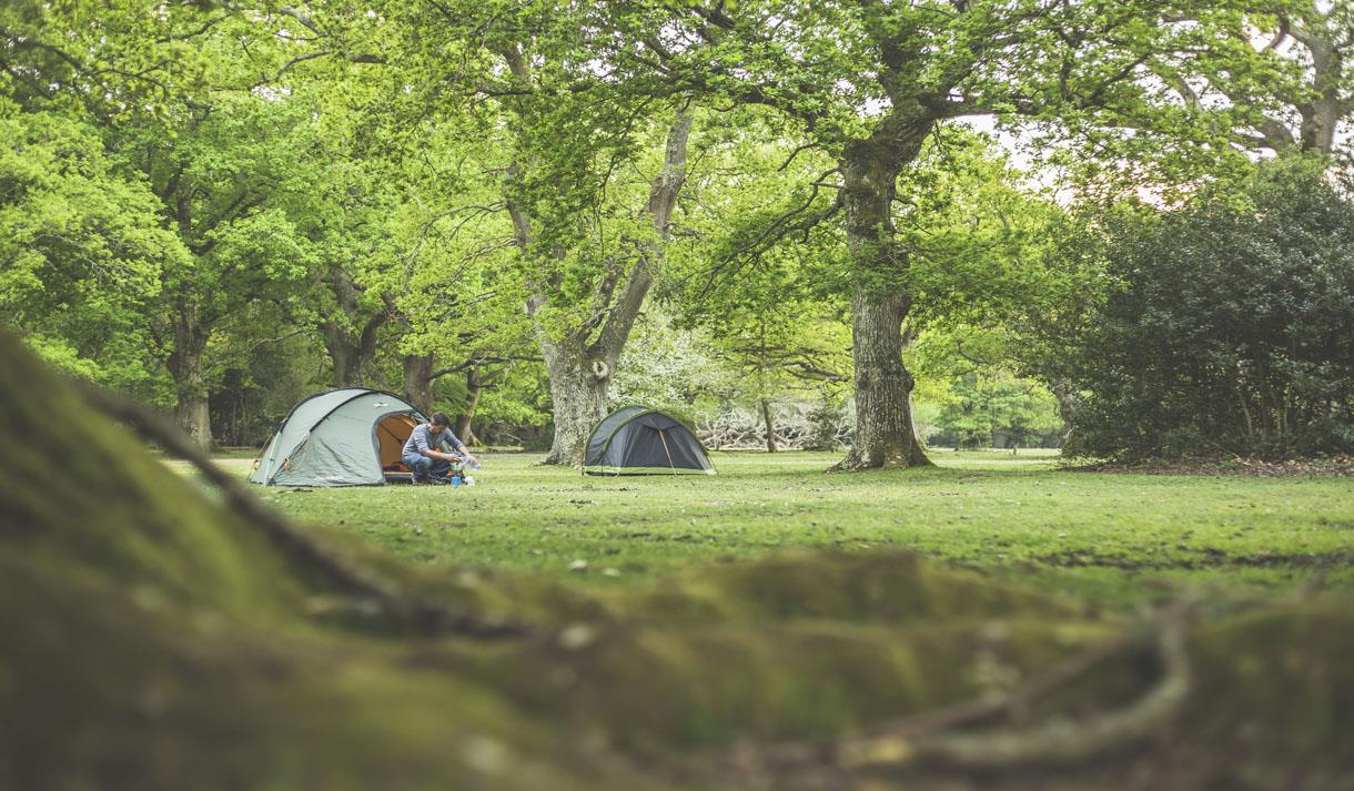 Campsite at Ashurst Caravan & Camping Site in The New Forest
