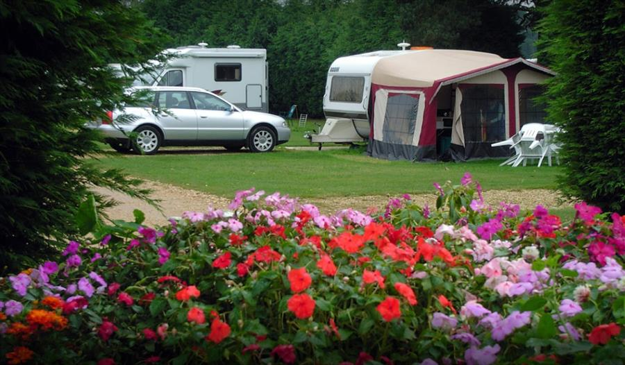 caravans at harrow wood farm caravan park in the new forest
