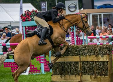New Forest and Hampshire County Show 2019