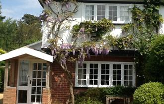 New Forest Cottage Holidays