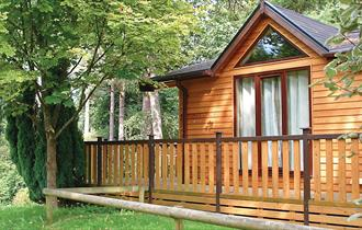 chalet within the forest at Sandy Balls Holiday Village in the new forest