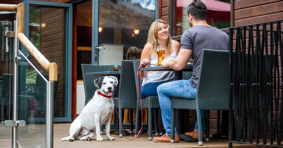 New Forest Dog Friendly Pubs With Rooms